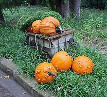 Harvest Time by Vivian Sturdivant
