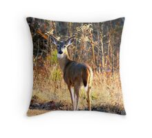 One last glance back........ Throw Pillow