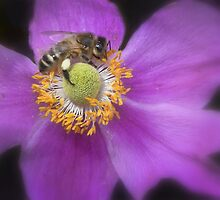 'The busy bee has no time for sorrow'  by Thea 65