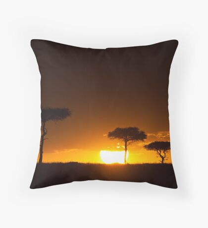 the sun drips low Throw Pillow