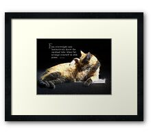 Overweight cats-saying Framed Print