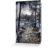 After the Winter Storm Greeting Card