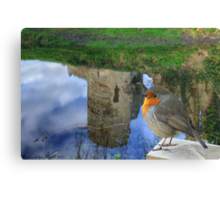 Robin enjoying the Castle Reflections Canvas Print