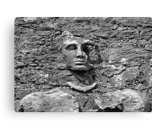 Face in Stone Canvas Print