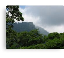 Henri Pittier National Park Canvas Print