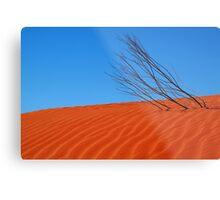 Desert,N.T. Metal Print
