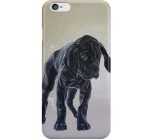 The Dane iPhone Case/Skin