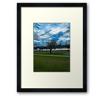 Hawthorne Tree Framed Print