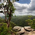 Martin's Lookout I by Lorraine Creagh