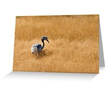 Blue Crane Greeting Card