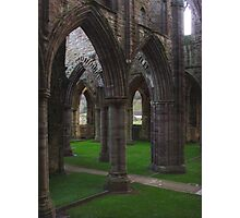 Archway Labyrinth, Tintern Abbey ~ Wye Valley, Monmouthshire 2009 Photographic Print