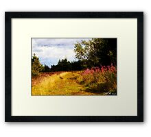 Willow Herb Framed Print