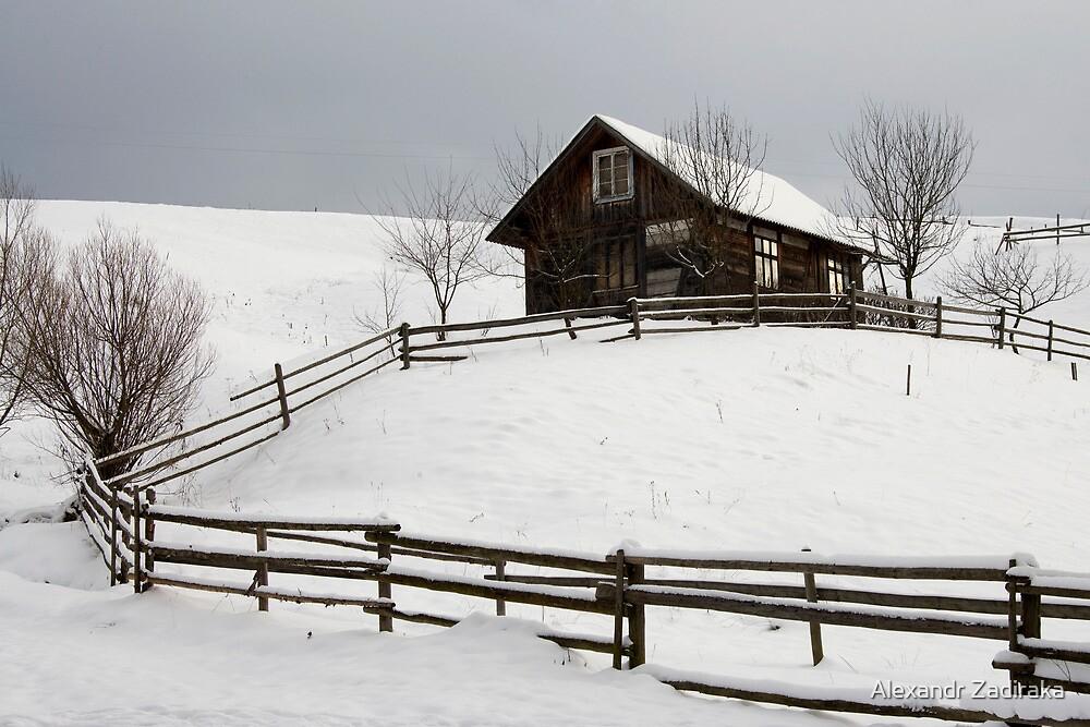 old house and fence by Alexandr Zadiraka