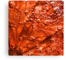 Blood Grapefruit in fizzy water Canvas Print