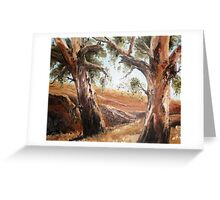 Wheatbelt Gums Greeting Card