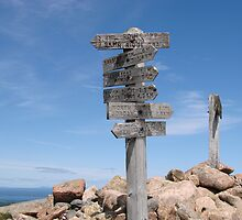Sargent Mountain Peak Trail Sign, Acadia National Park by Dan Hatch