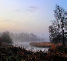 A New Dawn by Wrayzo