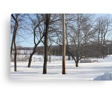 Wintery Landscape Hidden Raised Garden 10 Metal Print