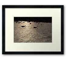 Nessy and co. Framed Print