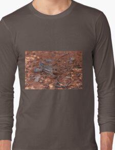 He's Safe Long Sleeve T-Shirt