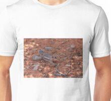 He's Safe Unisex T-Shirt