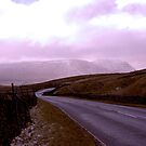 Dales Road by Trevor Kersley