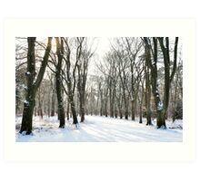 Here the snow shot after all Art Print
