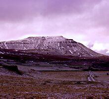 Ingleborough Fell by Trevor Kersley