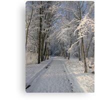Snowy Woodland Scene Metal Print