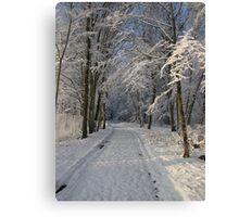 Snowy Woodland Scene Canvas Print