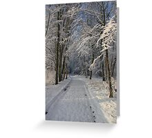 Snowy Woodland Scene Greeting Card