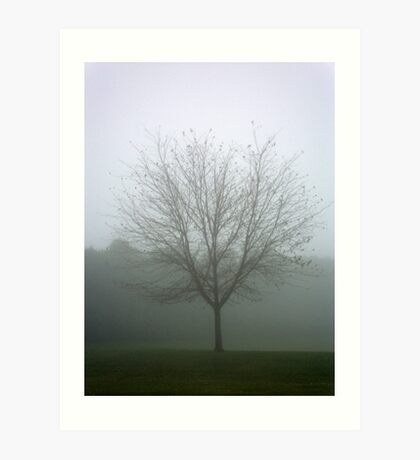 Ghosted Tree Art Print