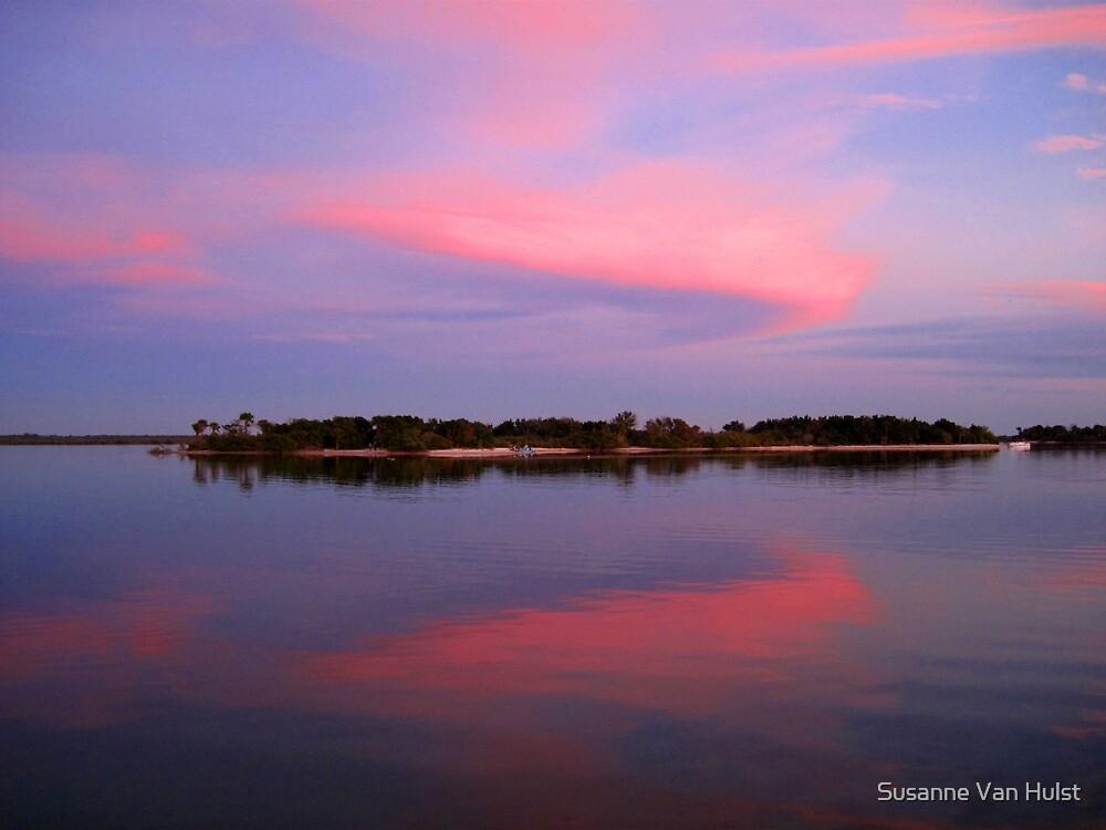 Pink sky after sunset by Susanne Van Hulst
