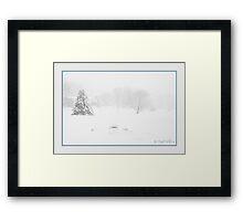 The Softness of Winter Framed Print
