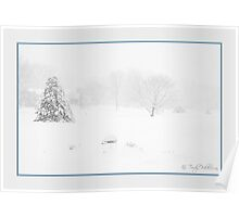 The Softness of Winter Poster