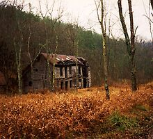 In The Wilds Of West Virginia by artwhiz47