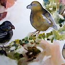 Birds by May Hege  Rygel
