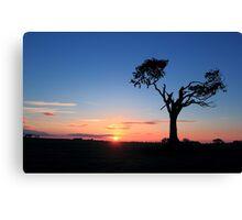 Sunrise...Just Waking Up Canvas Print
