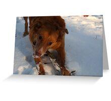 Snow Happy Greeting Card