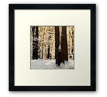 Frosty WinterRise Framed Print