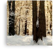 Frosty WinterRise Canvas Print