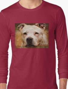 Portrait of a Staffy - White Staffordshire Bull Terrior Long Sleeve T-Shirt