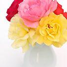 roses in white vase by OldaSimek