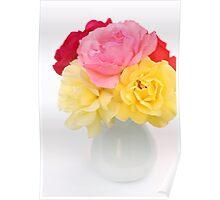 roses in white vase Poster