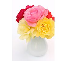 roses in white vase Photographic Print