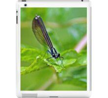 Garden Poser iPad Case/Skin
