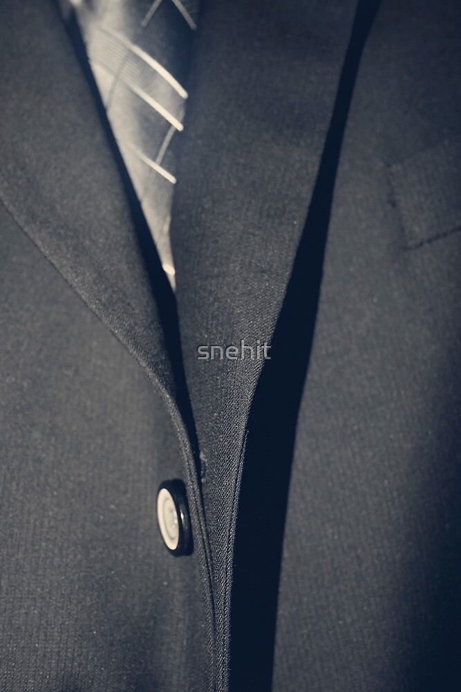 Business Man In Suit by snehit