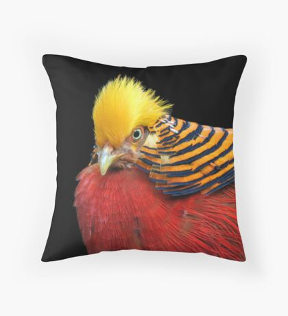 Multi Colored Bird Throw Pillow