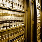 Law Book Library by snehit