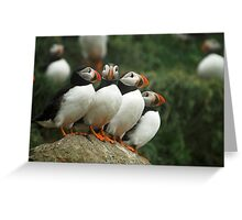 Puffin Posse Greeting Card